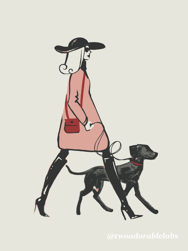 Lady and Dog Postcard