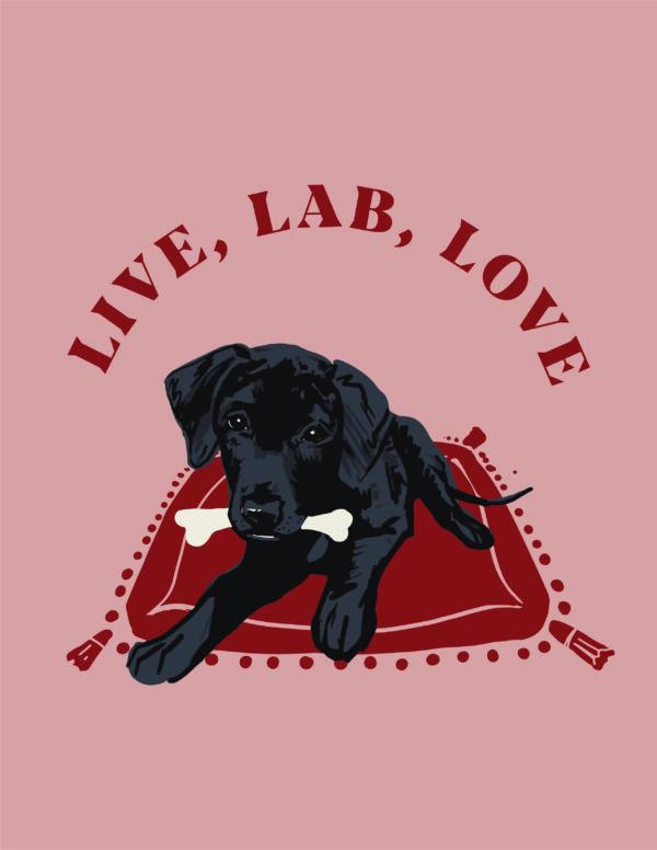 Live, Lab, Love Postcard